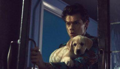 Harry Styles — 'Kiwi'