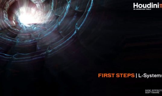 First Steps   Lsystems