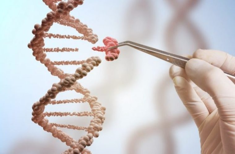 Europe to Create First Genetically Modified Humans Ever