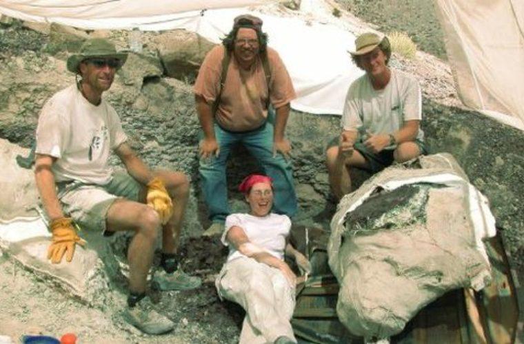 Half-Reptile, Half-Mammal Fossil Discovered In Utah