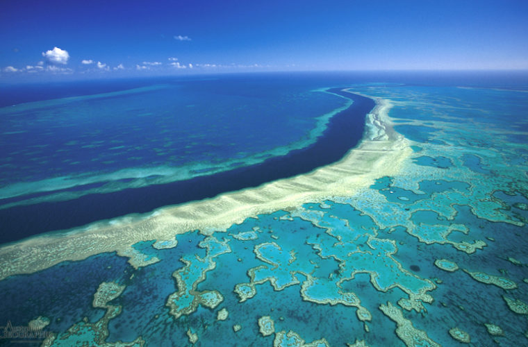 'Nail in the Coffin' as Australia Plans to Dump More Than 1 Million Tons of Sludge in Great Barrier Reef Waters