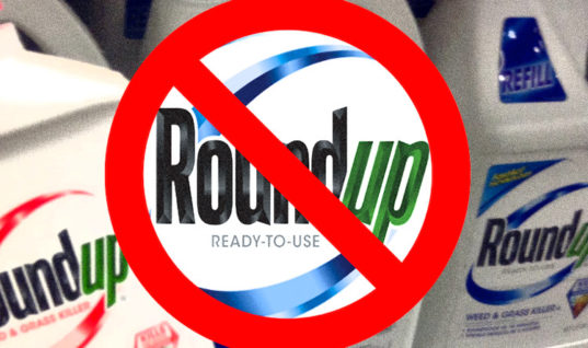Los Angeles County Issues Moratorium on Monsanto's Roundup and Glyphosate Containing Herbicides