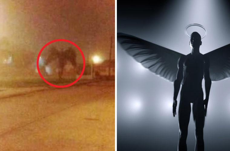 Documentary to Investigate Mothman Creature