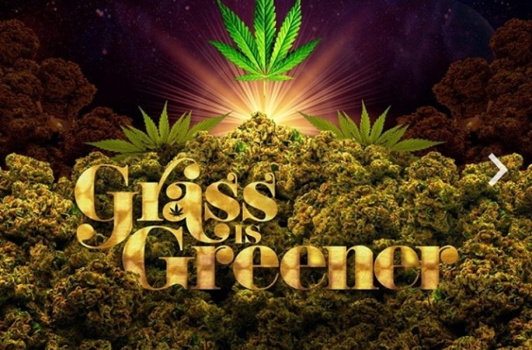 New Album: Salaam Remi 'Grass Is Greener'