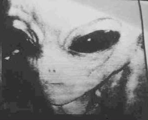 Alien Beings Are Already Here On This Planet And This Cover Up Is About To Be Blown 33