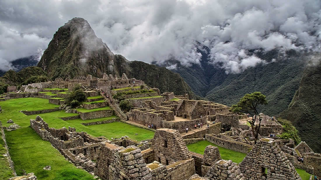 One million trees will be planted around Machu Picchu 31