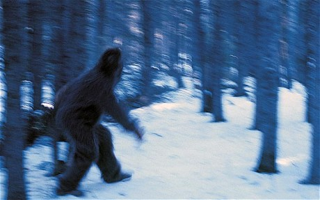 Yetis and other examples of 'Cryptozoology' 76
