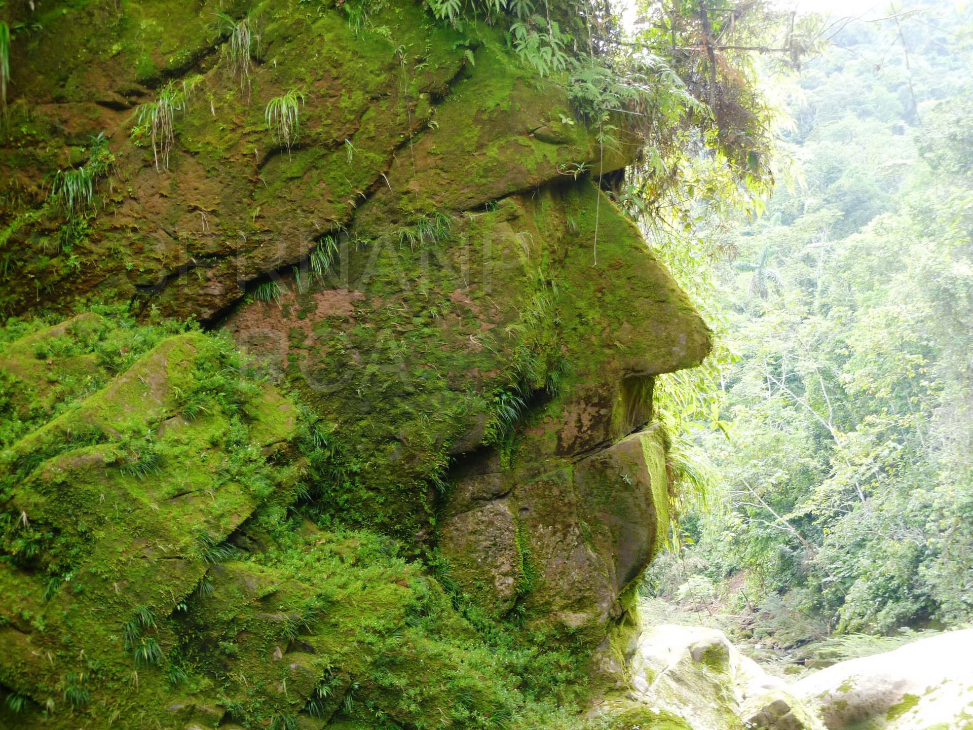 The Harakbut Face - A supermassive ancient face hidden deep in the Peruvian Amazon 34