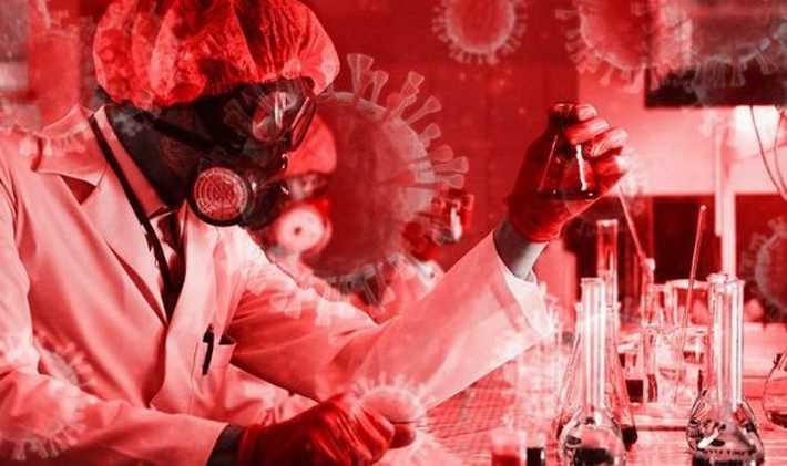 "Coronavirus, a virus ""genetically designed for effective spread in humans"" 35"