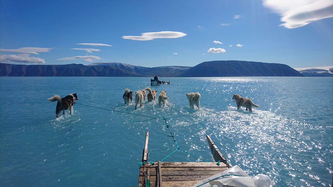 Greenland lost 600 billion tons of ice last summer 36