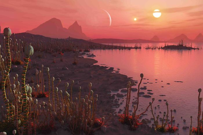 Hundreds of exoplanets with two suns discovered 31