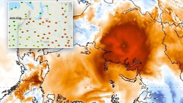 Alarming heat wave hits the Arctic and brings its temperatures to over 20 degrees Celsius 12