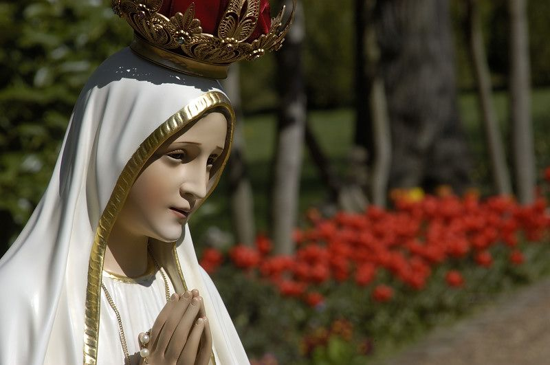 Rumor on social networks of Pope Francis and the third secret of Fatima: Will he be the victim of the prophecy? 31