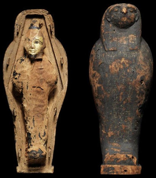 The CT scans performed on Mummies in Egyptian sarcophagi reveal that they are not Human 45