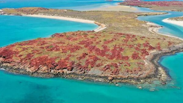 Ancient Australian Aboriginal Sites Discovered 8