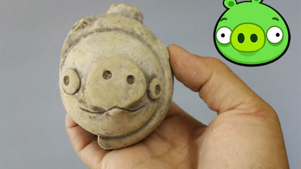 Millennial figurine found in China looks like a pig from the game Angry Birds 9