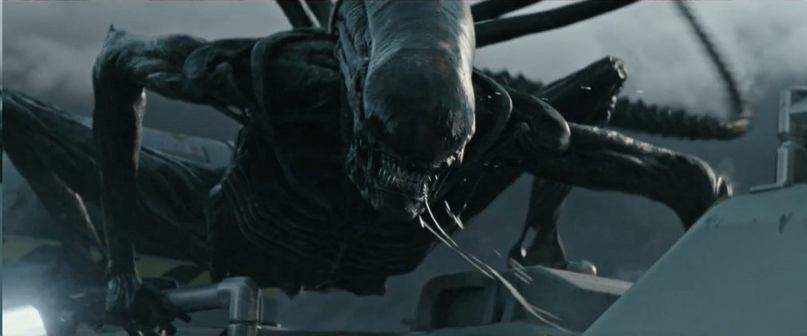 Alien beasts.  What they can be, image # 3