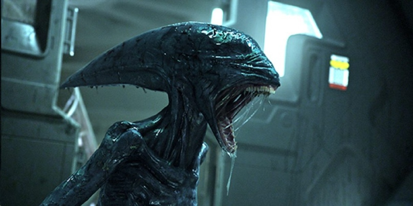 Alien beasts.  What they can be, image # 5