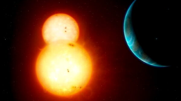 "A new ""Twin Sun"" study indicates that ""Planet X"" is not alone in the outer solar system 39"