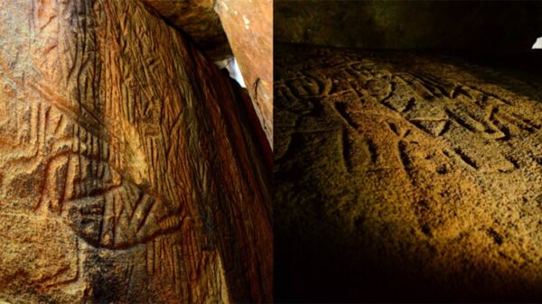 Discovered Mysterious petroglyphs containing ancient astronomical code 23