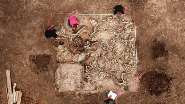 They discovered the tomb of an ancient Germanic leader surrounded by six women 58