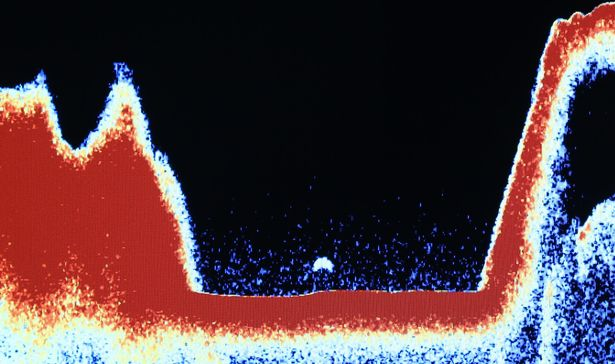 """Loch Ness monster is """"captured in sonar"""" by a tourist boat 31"""
