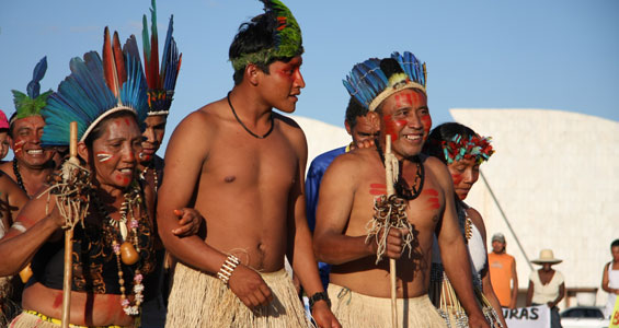 Image results for Macuxi Indians