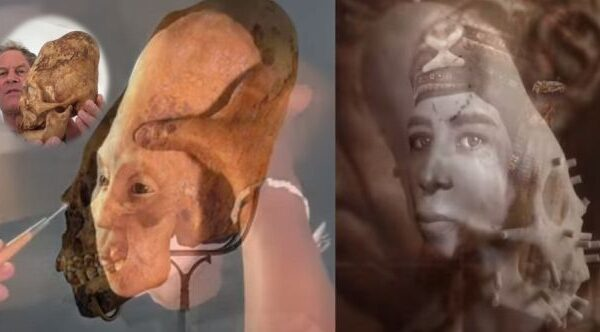 New results of elongated skulls in Paracas: Not human? 32