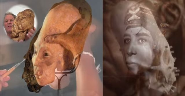 New results of elongated skulls in Paracas: Not human? 31