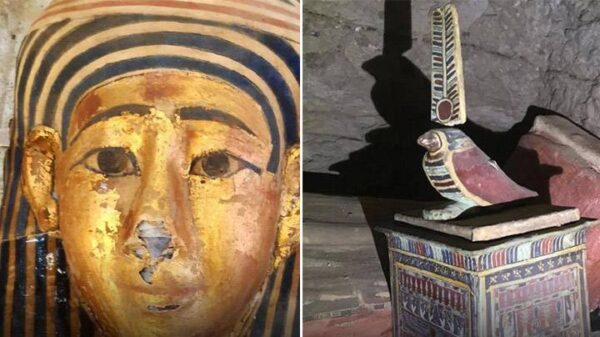 Egypt about to announce biggest archaeological find of 2020 14