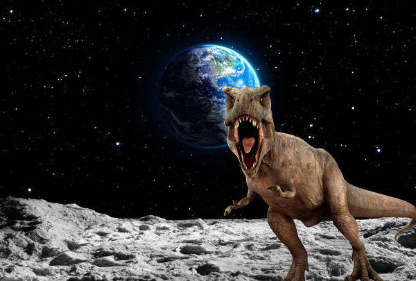 """""""Dinosaur remains are probably found on the Moon,"""" says science journalist 38"""