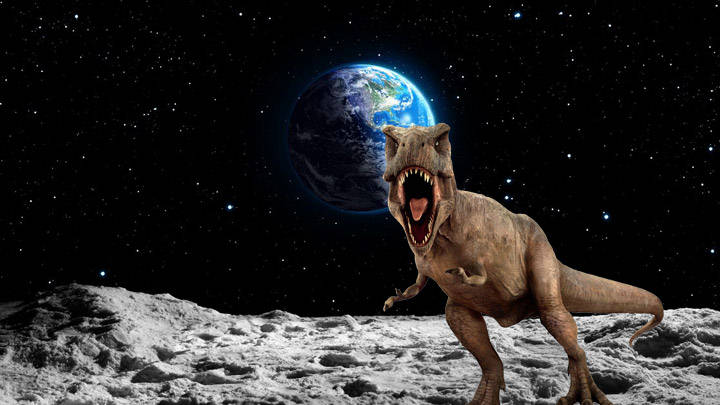 """""""Dinosaur remains are probably found on the Moon,"""" says science journalist 33"""