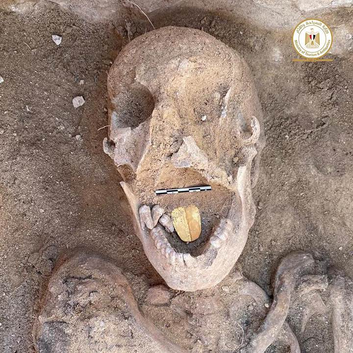 16 catacombs with their mummies found in Alexandria 40