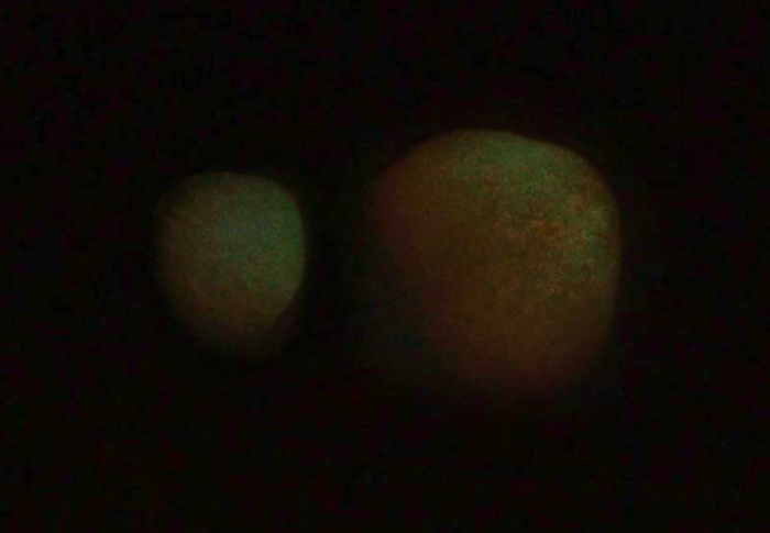 """Two huge """"celestial bodies"""" appear in the night sky above Dubai 43"""