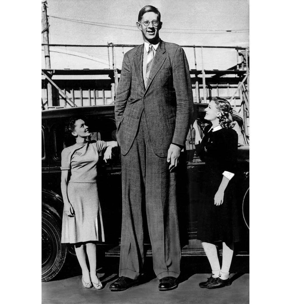 Robert Wadlow, 1938 ullstein bild / ullstein bild via Getty Images
