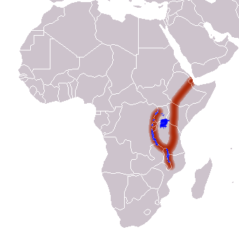 Layout of the East African Rift Valley.  Photo © Wikipedia